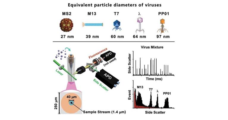 病毒的高分辨单颗粒检测